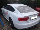 Trockeneisstrahlen-Audi-mit-Beton-entfernt-Kraftwagenzentrum-002.jpg