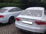 Trockeneisstrahlen-Audi-mit-Beton-entfernt-Kraftwagenzentrum.jpg